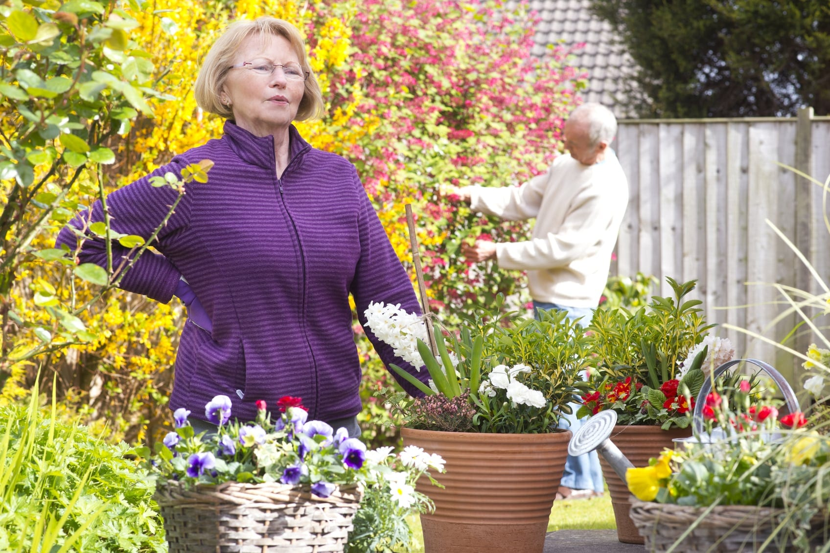 Elderly Woman Experiencing Lower Back Pain While Gardening Stock Photo