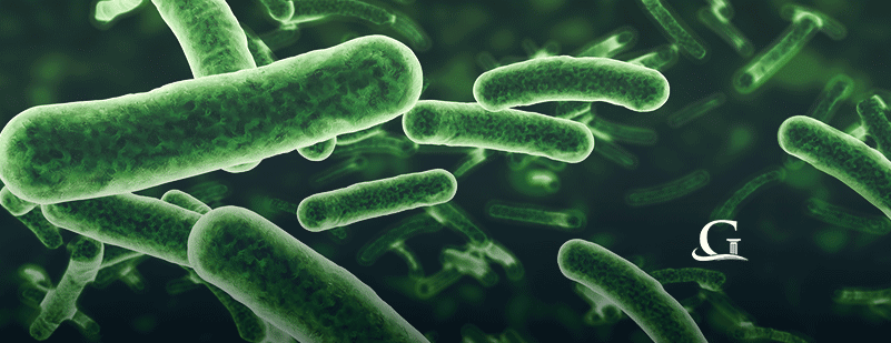 Superbugs: What You Need To Know About Antibiotic Resistant Infections
