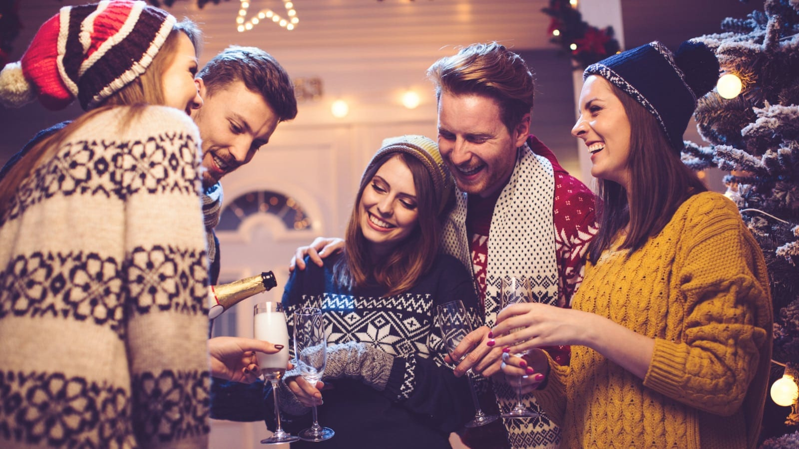 Friends Making A Toast At A Holiday Party Stock Photo